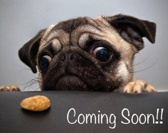 Gourmet Dog Treats