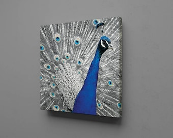 Peacock Canvas Wall Art Print Decor Home Picture Abstract Home, Office or Dorm