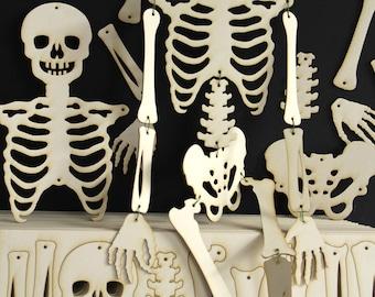 Skeleton Kit, laser cut, pack of 4, ready cut skeletons, teaching resource, home education, fun party gift, Halloween,