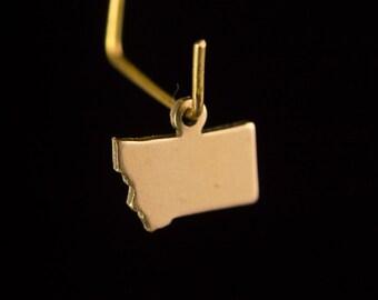 Raw Brass Tiny Montana Blank State Charm Drops (6) chr228UU