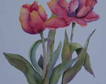 Coral tulips in watercolor
