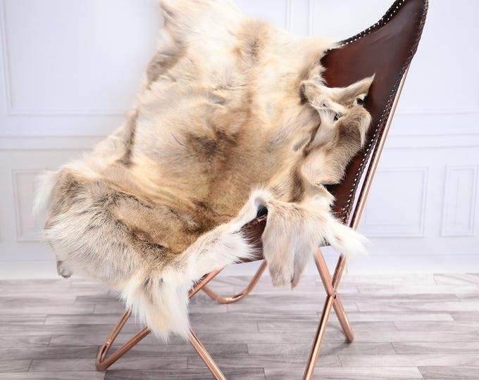 Reindeer Hide | Reindeer Rug | Reindeer Skin | Throw L  Large - Scandinavian Style #20RE19