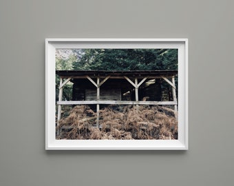 """Shelter photography print, Nature photography print 5""""x7"""", 8""""x12"""", 12""""x18"""""""