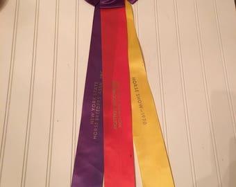1970 GRAND CHAMPION Senior Appaloosa Stallion New York State Horse Breeders Association Horse Show! gc001