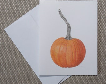 """Pie Pumpkin - note cards - 6 blank botanical cards with envelopes - all one design - 5 1/2"""" x 4 1/4"""" - small gift idea - stationery - autumn"""