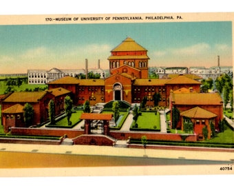 UNIVERSITY OF PENNSYLVANIA, Museum of University of Pennsylvania, Philadelphia Pennsylvania Vintage Unused Postcard