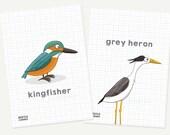 Mini river bird prints - ...