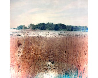 Marsh Landscape Photography, Lomography, Holga Print, Farmhouse Decor, Rustic Decor