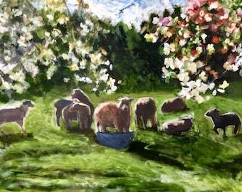 Sheep Meadow, Spring