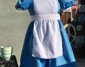 Inspired by Alice in Wonderland- child costume
