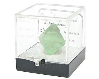 Fluorite Octahedron Green Semiprecious Gemstone Geo Treasure from an estate collection in an Acrylic Museum Box