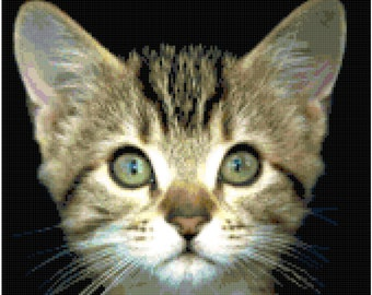 Gray Tabby Kitten Cat Counted Cross Stitch Pattern Chart PDF Download by Stitching Addiction