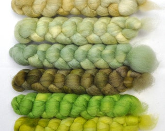 Hand dyed roving -  Blue Faced Leicester (BFL) wool spinning fiber - 6.2 ounces - Pea Vines