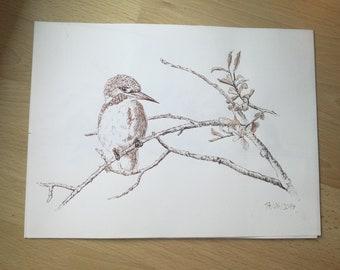 Kingfisher, Walnut stain
