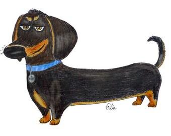 dachshund dog / Buddy / The Secret Life of Pets