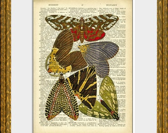 BUTTERFLIES recycled book page art print - an upcycled antique dictionary page with a retooled antique insect illustration - home decor