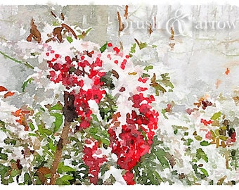 Red Berries in Snow, art print, watercolor style image, instant digital download