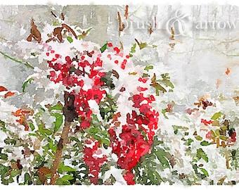 Red Berries in Snow, art print, watercolor style image, instant digital download