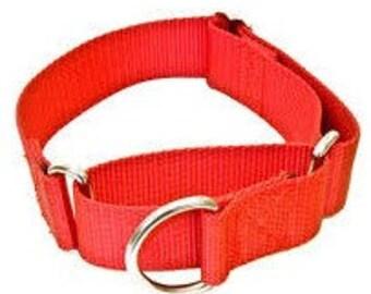 MARTINGALE UPGRADE Dog Collar