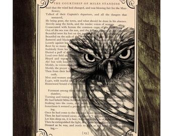 Owl Dictionary page book art print Black Owl Print on Vintage Book altered art dictionary page illustration ANI030