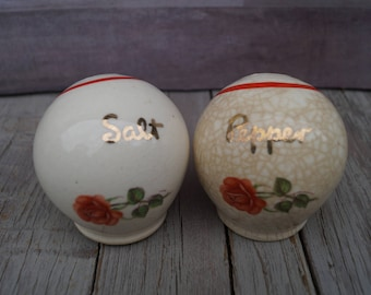 Hand Painted Rose Salt and Pepper Shakers