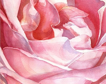 SALE Rose from Balboa Park Watercolor - Matted and Signed Giclee Fine Art Print