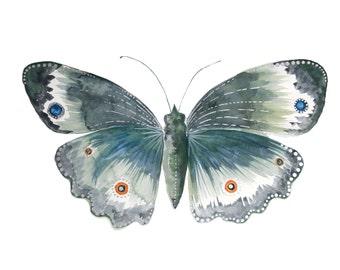 Moth Print - Watercolour Painting