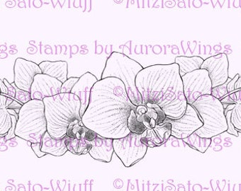 Digital Stamp - Instant Download - Orchid Border - digistamp - Elegant Floral Border - Line Art for Cards & Crafts by Mitzi Sato-Wiuff
