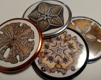 Sea Shell Pocket Purse Cosmetic Make up Mirror 2 1/4 inch