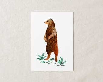 Grizzly Bear - Art Print