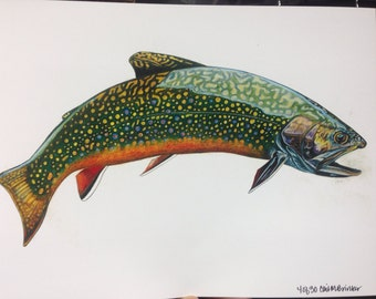 SMALL 8.5x11 full body Brook Trout Print limited edition