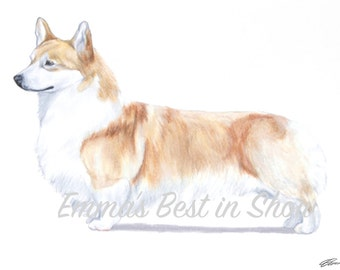 Pembroke Welsh Corgi Dog - Archival Quality Fine Art Print - AKC Best in Show Champion - Breed Standard - Herding Group - Original Art Print