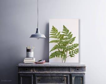 Fern Wall Art, Fern Art, Fern Photograph, Botanical Print