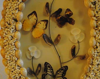 Seashell and butterfly shadow box art piece