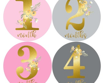 Baby Girl Monthly Stickers Girls 1st Year Stickers Floral Baby Months Stickers Blush Pink, Gold, Dove Grey Milestone Labels Baby Shower Gift