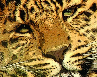 Leopard Cub - **FREE UK Shipping! MC14806