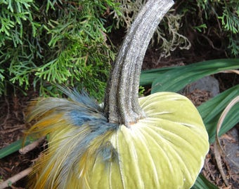 Handmade Chartreuse Velvet pumpkin with feather plume and real dried pumpkin stem