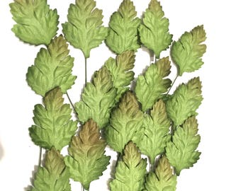 Two Tone Oak Mulberry Paper Leaves Leaf21