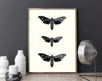 Moth Print, Vintage Art, Wall Decor, Moth Art, Illustration, Cabin Decor, Minimal Wall Art.