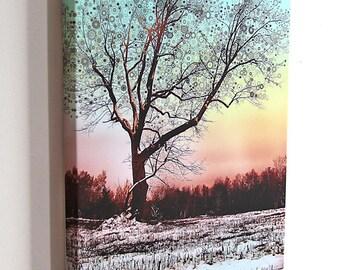 Winter Star Tree - 16x20 gallery wrap canvas