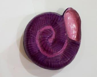 Handmade colored spiral shells