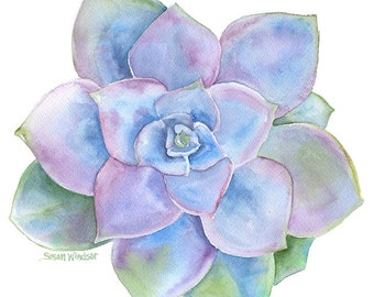Blue Succulent Watercolor Painting - 8 x 10 (8.5 x 11) - Giclee Print