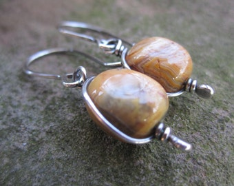 Crazy Lace Agate and Sterling Silver Earrings