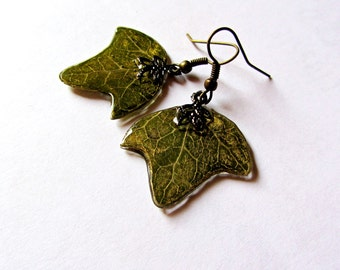 Earrings green leaf, Green gift for girls, Jewelry with golden patina and real plant dangles, Garden ivy earrings, Nature lover jewelry