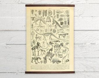 Vintage Paleontology Skeletons Larousse Print Wooden  Wall Chart