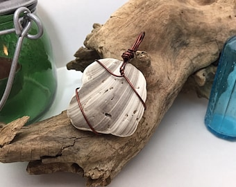 Seashell Beach Pendant - Wire Wrapped