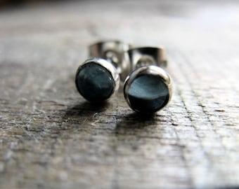 Swiss Blue Topaz Sterling Silver Earrings