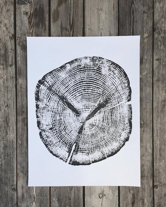 Alaskan Cedar, Ketchikan Alaska, Woodcut, Tree Ring Art Print, Tongass Forest, Real Tree Stump Art, Father's Day art, Best Dad Gifts, Linton