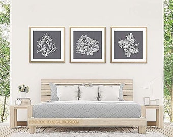 Cool Gray Wall Art, Deep Gray, Coral Print Set of Three, Coral Wall Art, Coral Print, Gray Wall Art, Gray Coral Prints, Dark Gray Wall Art
