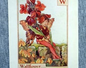 Wallflower Alphabet Lette...
